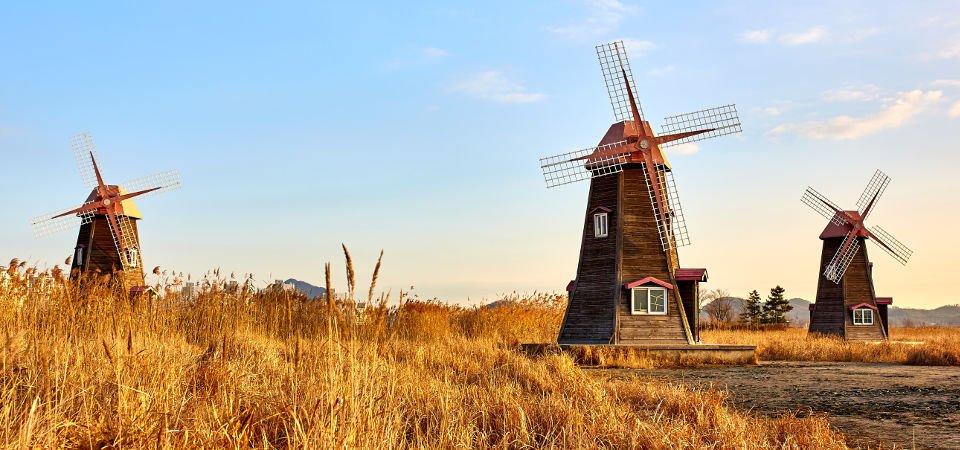 Niederländisch Sprachzertifikate Erwerben Sprachzertifikatorg
